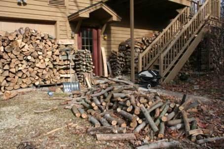 Wood_9447